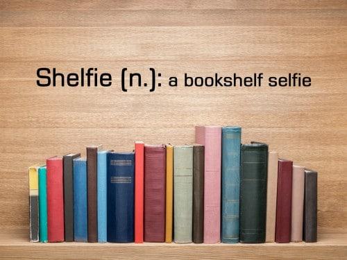 Image result for shelfie