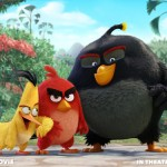 Rovio Disappointed By Declining Profits From Angry Birds Franchise