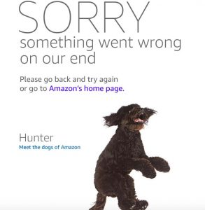 Amazon crashed as soon as Prime Day Started