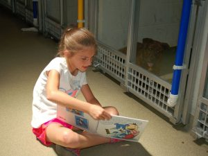 Kids are Reading to Shelter Dogs