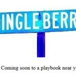 RIM in race to plug DingleBerry root for the BlackBerry PlayBook