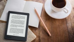 Kobo Plus Considered a Massive Success