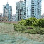 Vancouver Public Library Discusses Urban Green Space and eBooks