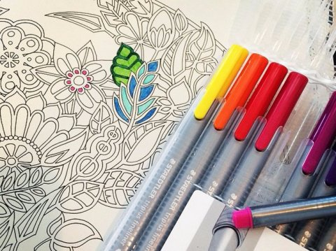 Johanna Basford Secret Garden Adult Coloring Books