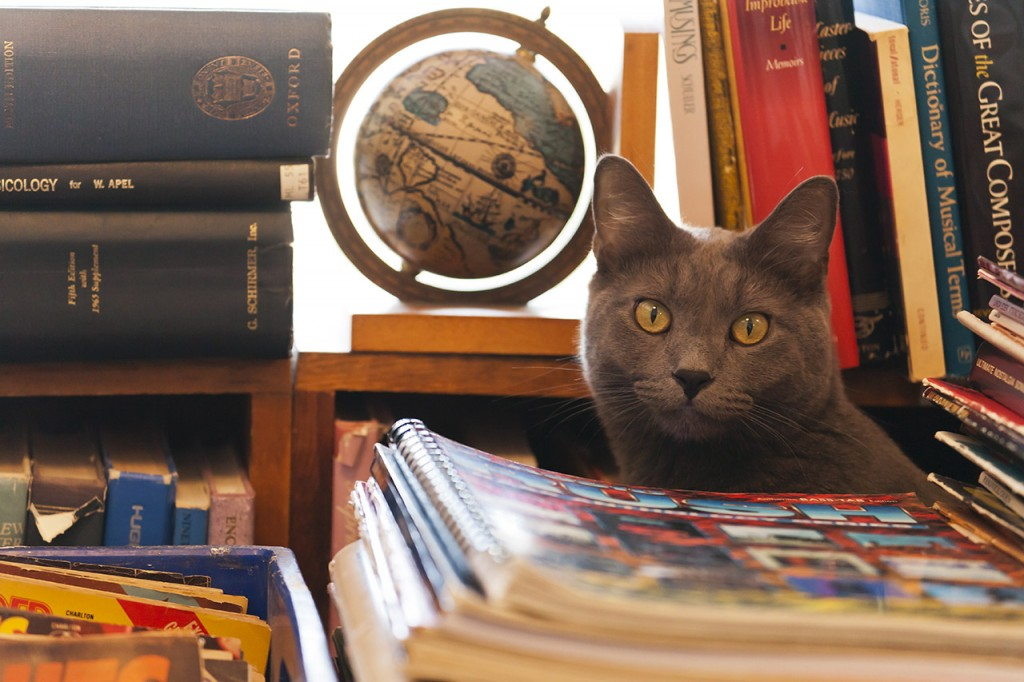 selected-works-bookstore-cat_101
